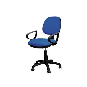 "Desk chair ""D"" poly arms 5 star nylon base w/casters, back and height adjustable"